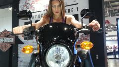 Harley Davidson Street 750 - Immagine: 14