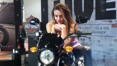 Harley Davidson Street 750 - Immagine: 15