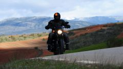 Harley-Davidson Street 750 - Immagine: 9