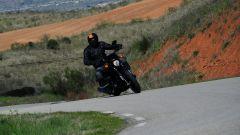 Harley-Davidson Street 750 - Immagine: 10