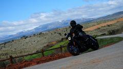 Harley-Davidson Street 750 - Immagine: 14