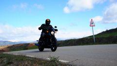 Harley-Davidson Street 750 - Immagine: 16