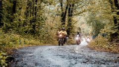 HAT Pavia Sanremo pioggia e divertimento bosco
