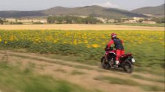 Le due anime della Honda Africa Twin 1100 in un video - Immagine: 2