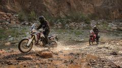 Honda Africa Twin 2015 : la provano Marquez e Barreda - Immagine: 10