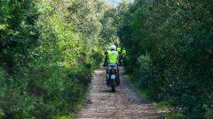 Honda Africa Twin True Adventure Sardegna 2016 - Immagine: 8