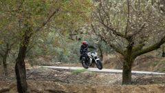 Honda CB650F - Immagine: 8