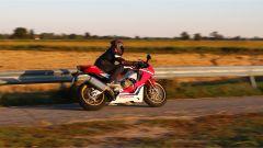 Honda CBR 1000 RR Fireblade SP 2019, il codino è monoposto
