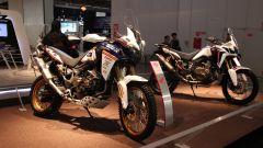 Honda CRF 1000L DCT Africa Twin Special: più africana di così...