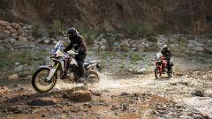Honda CRF1000L Africa Twin: nuove immagini e video - Immagine: 24