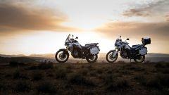 Honda CRF1000L Africa Twin: nuove immagini e video - Immagine: 37
