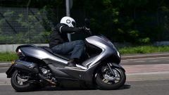 Honda Forza 300 - Immagine: 1