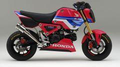 Honda MSX 125 Grom HRC: l'ottavo di litro diventa da corsa - Immagine: 1
