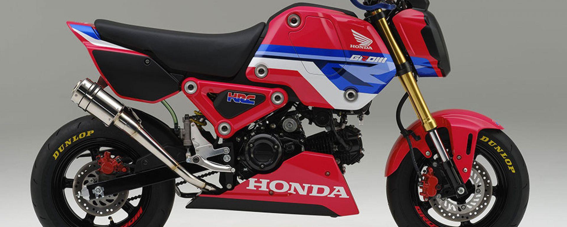 Honda MSX 125 Grom HRC: l'ottavo di litro diventa da corsa