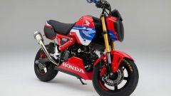Honda MSX 125 Grom HRC: l'ottavo di litro diventa da corsa - Immagine: 4