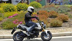 Honda MSX 125 - Immagine: 24
