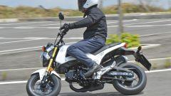 Honda MSX 125 - Immagine: 22