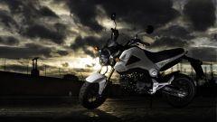 Honda MSX 125 - Immagine: 1