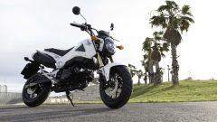Honda MSX 125 - Immagine: 17