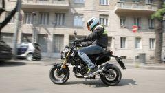Honda MSX 125 - Immagine: 8