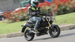 Honda MSX 125 - Immagine: 6