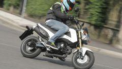 Honda MSX 125 - Immagine: 14