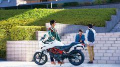 Honda VTR-F 250 2013 - Immagine: 4