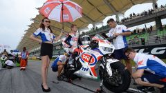 Honda World Superbike Team - Immagine: 55