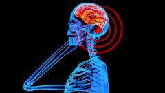 I cellulari provocano il cancro, ma non è un problema - Immagine: 1