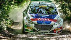 Il 46° Rally San Marino non porta gioie a Peugeot ma Andreucci ipoteca il Tricolore