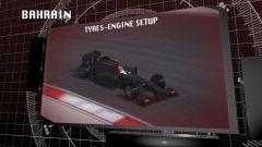 Il GP del Bahrain visto dai cordoli - Immagine: 3