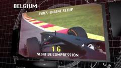 Il GP del Belgio visto dai cordoli - Immagine: 7