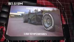 Il GP del Belgio visto dai cordoli - Immagine: 12