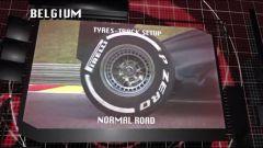 Il GP del Belgio visto dai cordoli - Immagine: 13