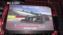 Il GP del Belgio visto dai cordoli - Immagine: 15