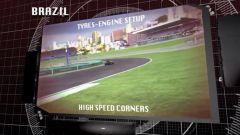 Il GP del Brasile visto dai cordoli - Immagine: 6