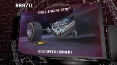 Il GP del Brasile visto dai cordoli - Immagine: 1