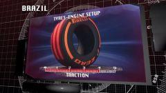 Il GP del Brasile visto dai cordoli - Immagine: 7