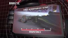 Il GP del Brasile visto dai cordoli - Immagine: 9