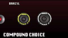 Il GP del Brasile visto dai cordoli - Immagine: 12