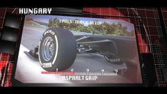 Il GP di Ungheria visto dai cordoli - Immagine: 5