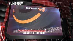 Il GP di Ungheria visto dai cordoli - Immagine: 6