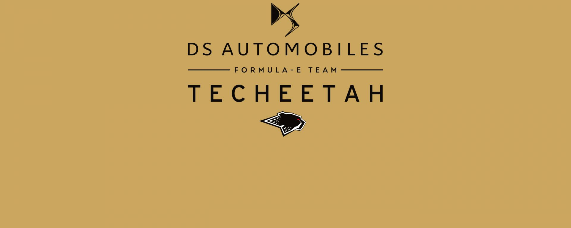 Il logo del DS Techeetah Formula E Team