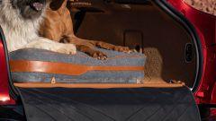 Il pacchetto per gli animali domestici della Aston Martin DBX