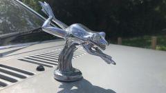 Il ranocchio sul cofano della Ford Escort Ghia