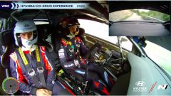 Il video onboard con Thierry Neuville
