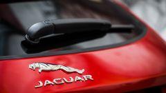 Jaguar E-Pace | Il cucciolo di giaguaro graffia   - Immagine: 14