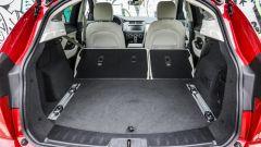 Jaguar E-Pace | Il cucciolo di giaguaro graffia   - Immagine: 17