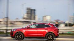 Jaguar E-Pace | Il cucciolo di giaguaro graffia   - Immagine: 24