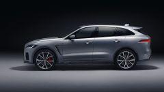 Jaguar F-Pace SVR: scatto da... leopardo - Immagine: 13